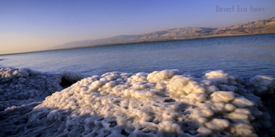 Tours to the Dead Sea area