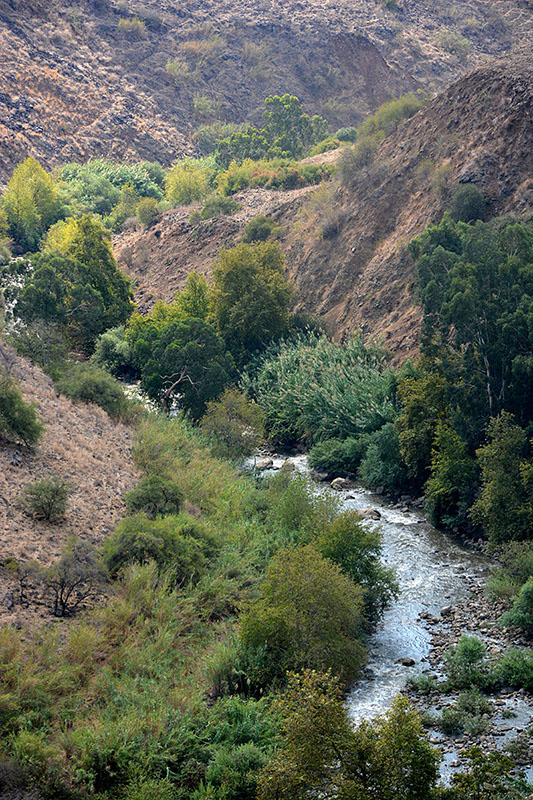 The Jordan River: Galilee