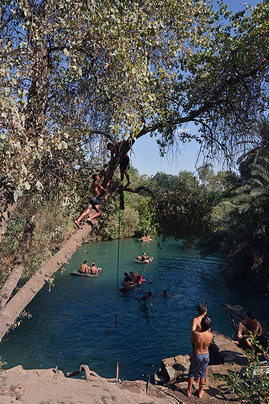 Water spring in the Galilee