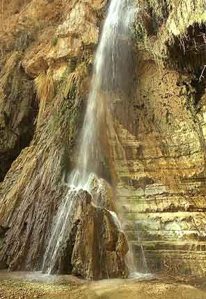 Ein Gedi and Masada tour
