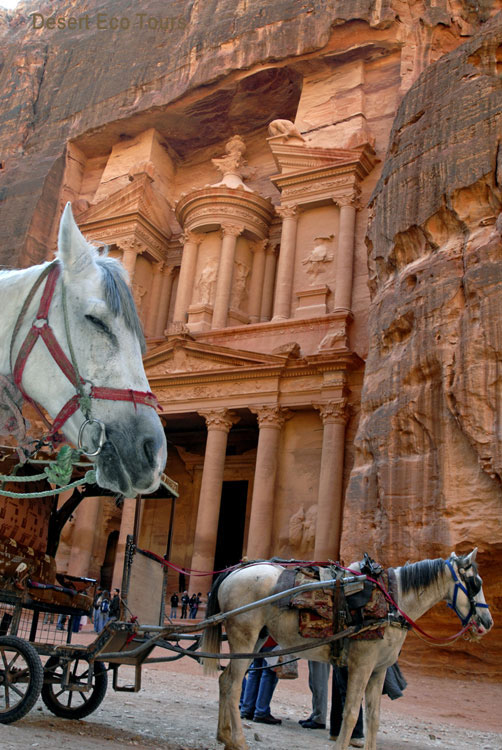 The Treasury (Hazane) Petra from Eilat