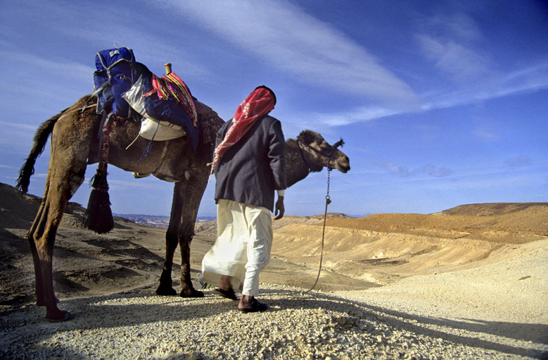 Camel and Hiking tours in the Sinai desert