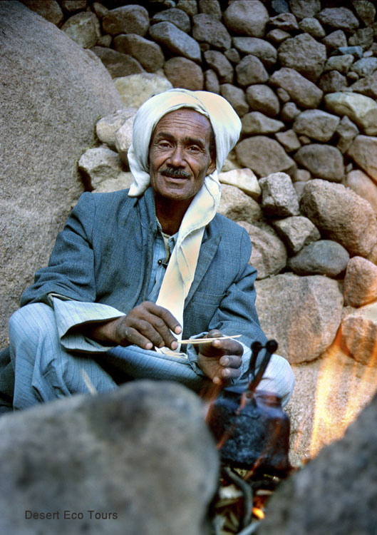 The Bedouin of the Sinai