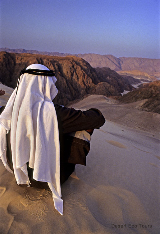 The Bedouins of the Sinai desert