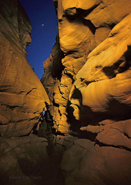 Sainai tours- Night  in the Sinai desert