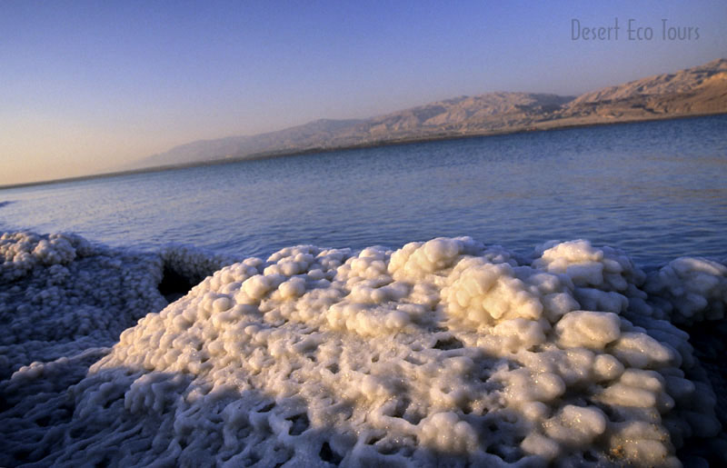 Dead Sea tours from Eilat or Jerusalem