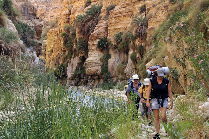 Hiking in the Dead Sea canyons- Tours of Jordan