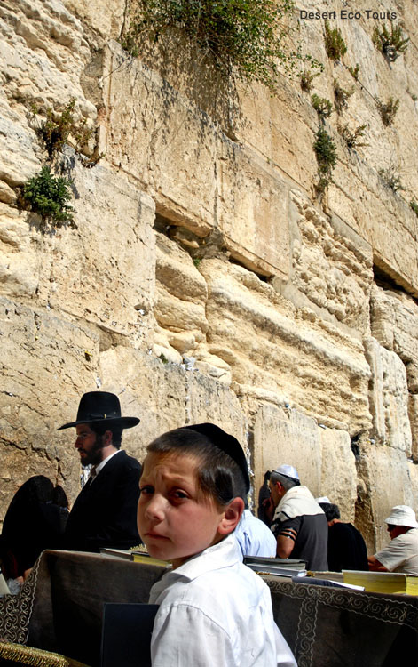 Jewish tour of Jerusalem- The Western Wall