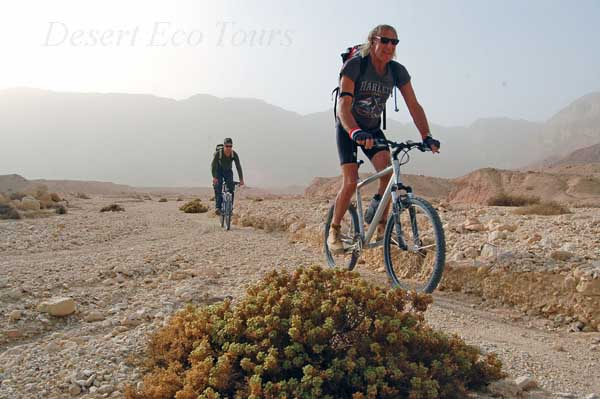 cycling tours in the Southern Negev