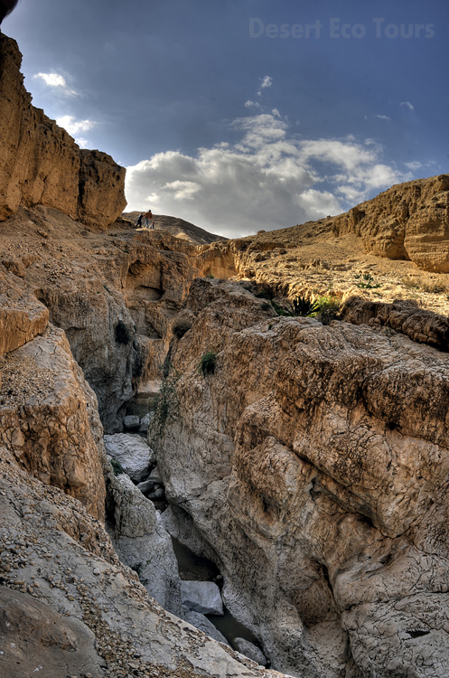 Jeep tours in the Negev