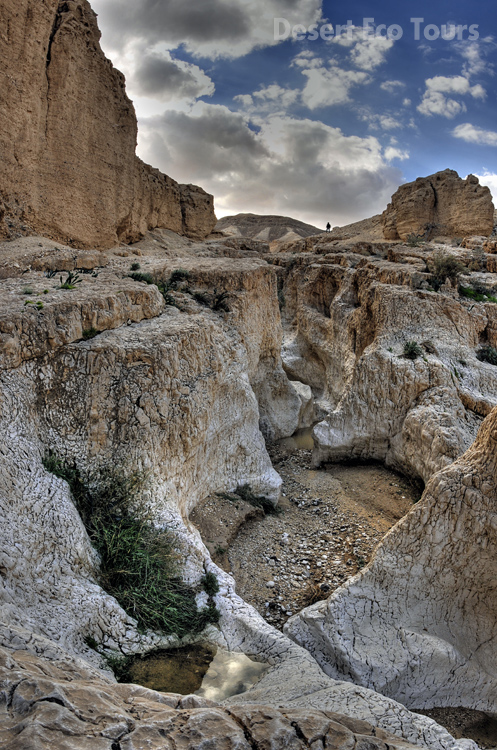 Hiking tours in Israel