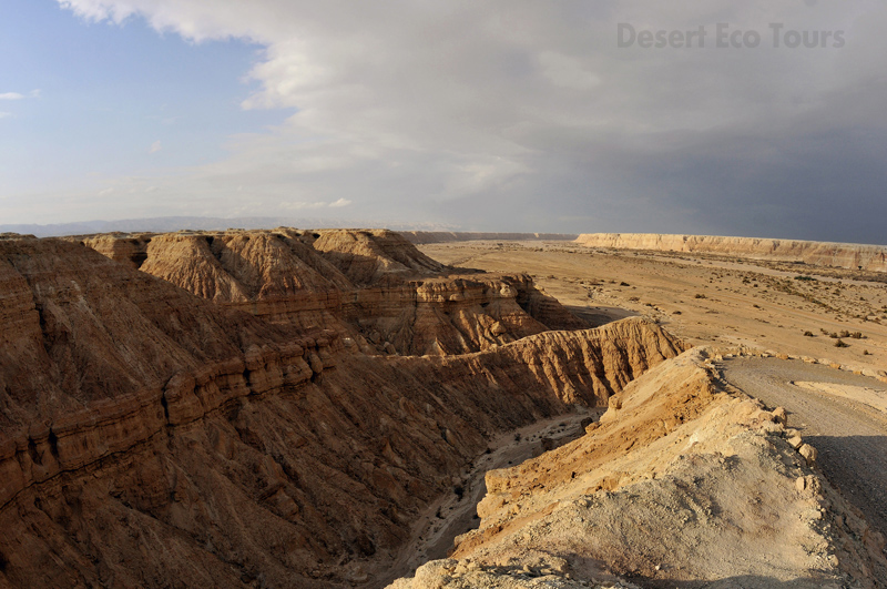 The Arava valley- Negev tours