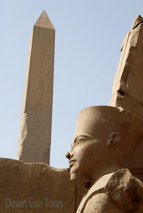 The temples of Luxor