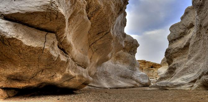 Desert Eco Tours - Negev Map